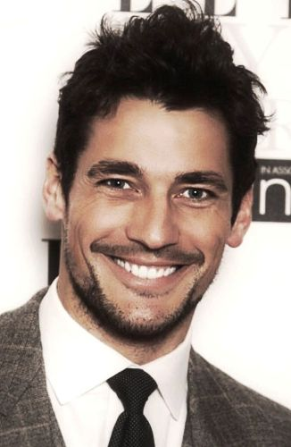 David Gandy Profile