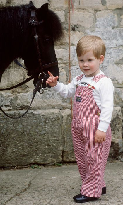 Prince Harry in His Childhood