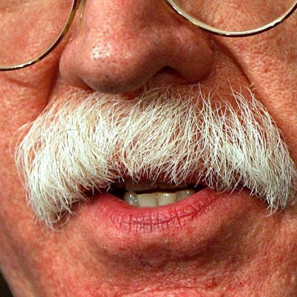 John Bolton Mustache