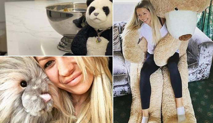 A collage of Alexandra Hall's stuffed toys