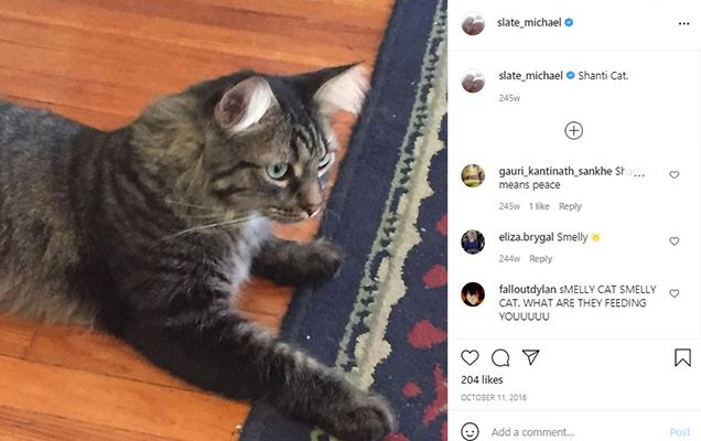 James Tyler talking about his pet cat in an Instagram post